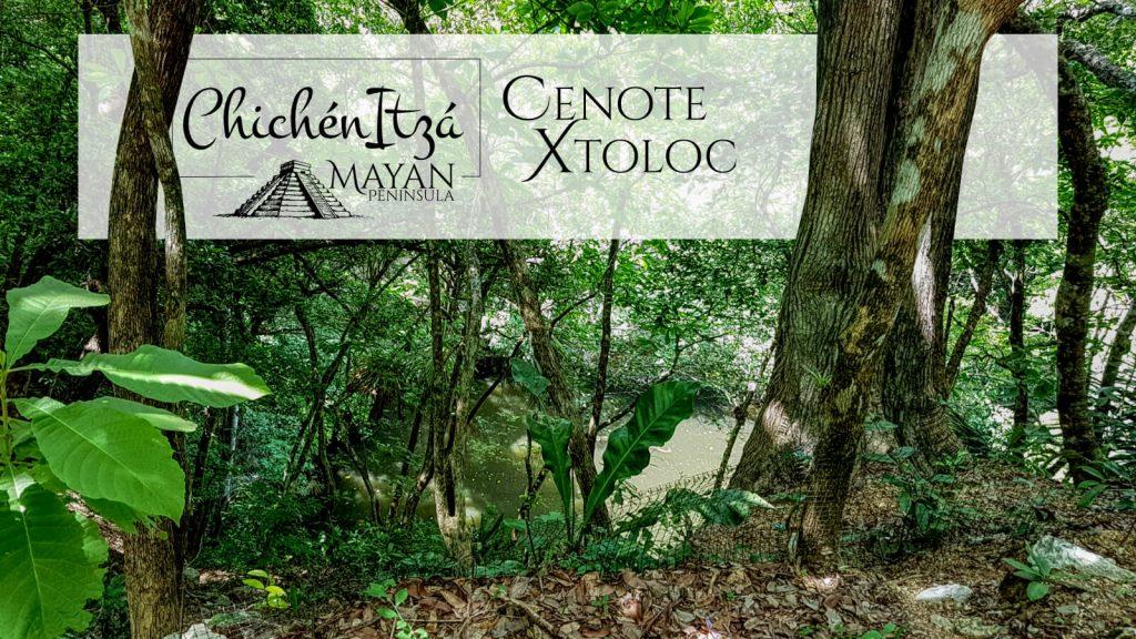 Cenote Xtoloc en Chichén Itzá