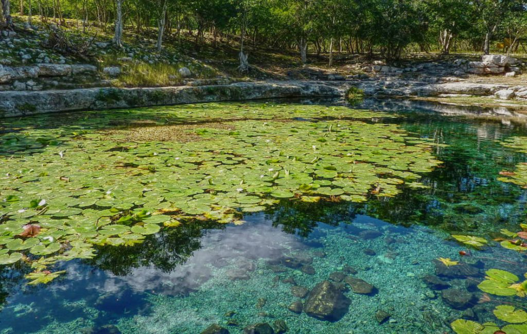 Clear waters of the Dzibilchaltun Cenote