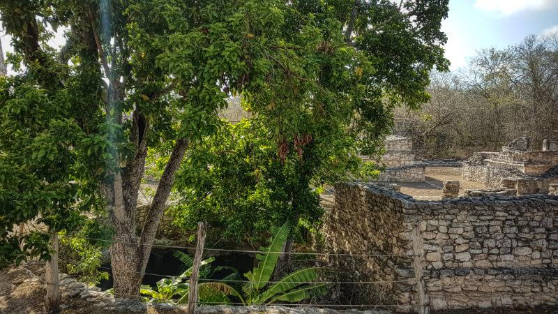 Templo y Cenote